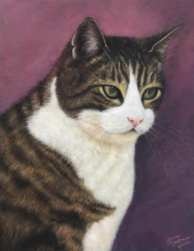 Pastel painting of brown tabby cat with white markings