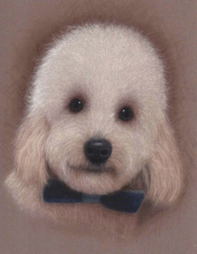 Pastel painting of poodle puppy